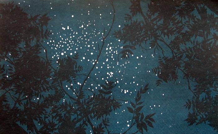 כוכבים בין הענפים