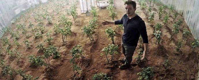 """מארק וואטני מהסרט """"להציל את מארק וואטני"""" מציג לראווה את תפוחי האדמה שגידל"""