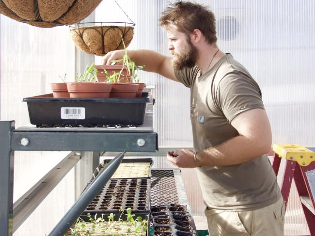 ריק בלייק מטפל בצמחים בחממה | צילום: Niamh Shaw Michaela Musilova