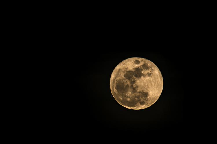 אלעד דרור- ירח מלא