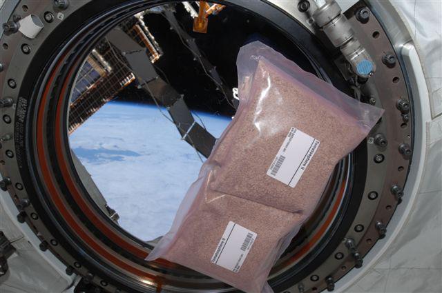 זרעי עגבניה על סיפון תחנת החלל הבינלאומית | NASA, Tomato Sphere