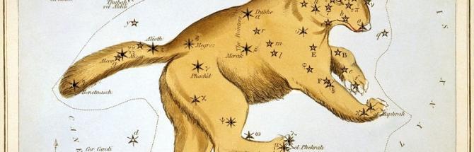 איור של הדובה הגדולה