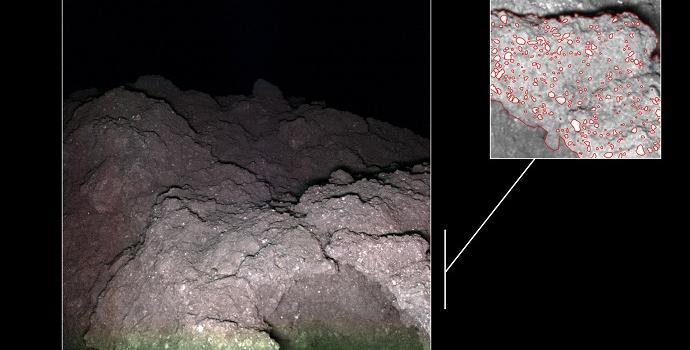 סלע דמוי כרובית על פני השטח של ריוגו. משמאל – החללים בתוך הסלע. קרדיט: DLR