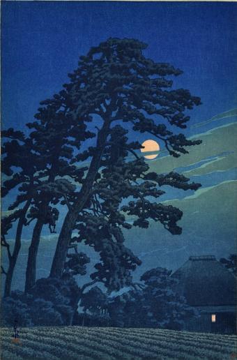 ירח מבעד לעצים