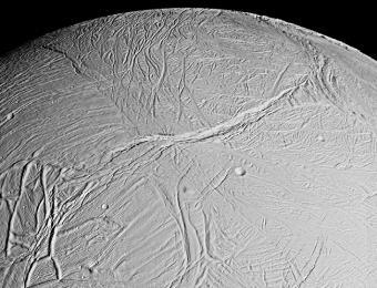 ירח הקרח אנקלדוס. לפי הערכות, באוקיינוס הגלובלי של אנקלדוס יש יותר מים מאשר בכל כדור הארץ   צילום: NASA.