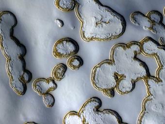 קרח יבש על פני הקוטב הדרומי של מאדים בעונת הקיץ | צילום: NASA/JPL/University of Arizona