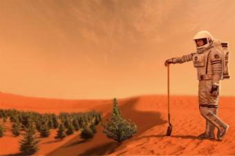 יישוב מאדים יחייב חקלאות מקומית | איור: D Mitriy