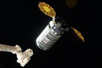 חללית המטען, סיגנוס, הנושאת בין השאר גם את המעבדה של ספייס פארמה, תתחבר ביום שלישי לתחנת החלל הבינלאומית | צילום: NASA/ESA